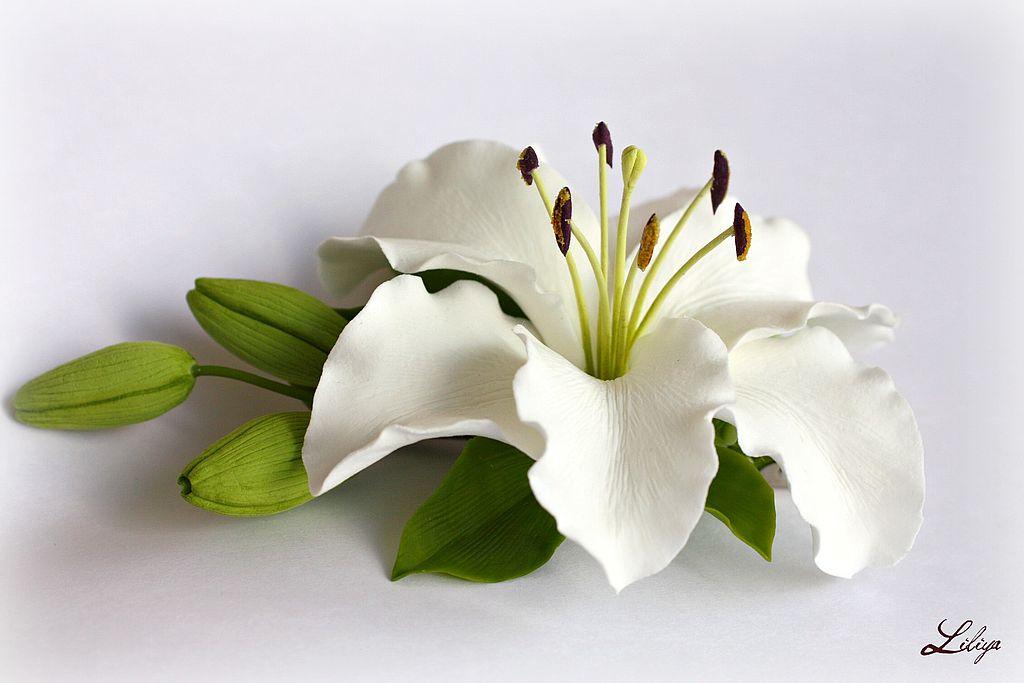 Христианская сценка на свадьбу лилия